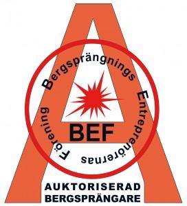 Aukt-BEF-PMS485